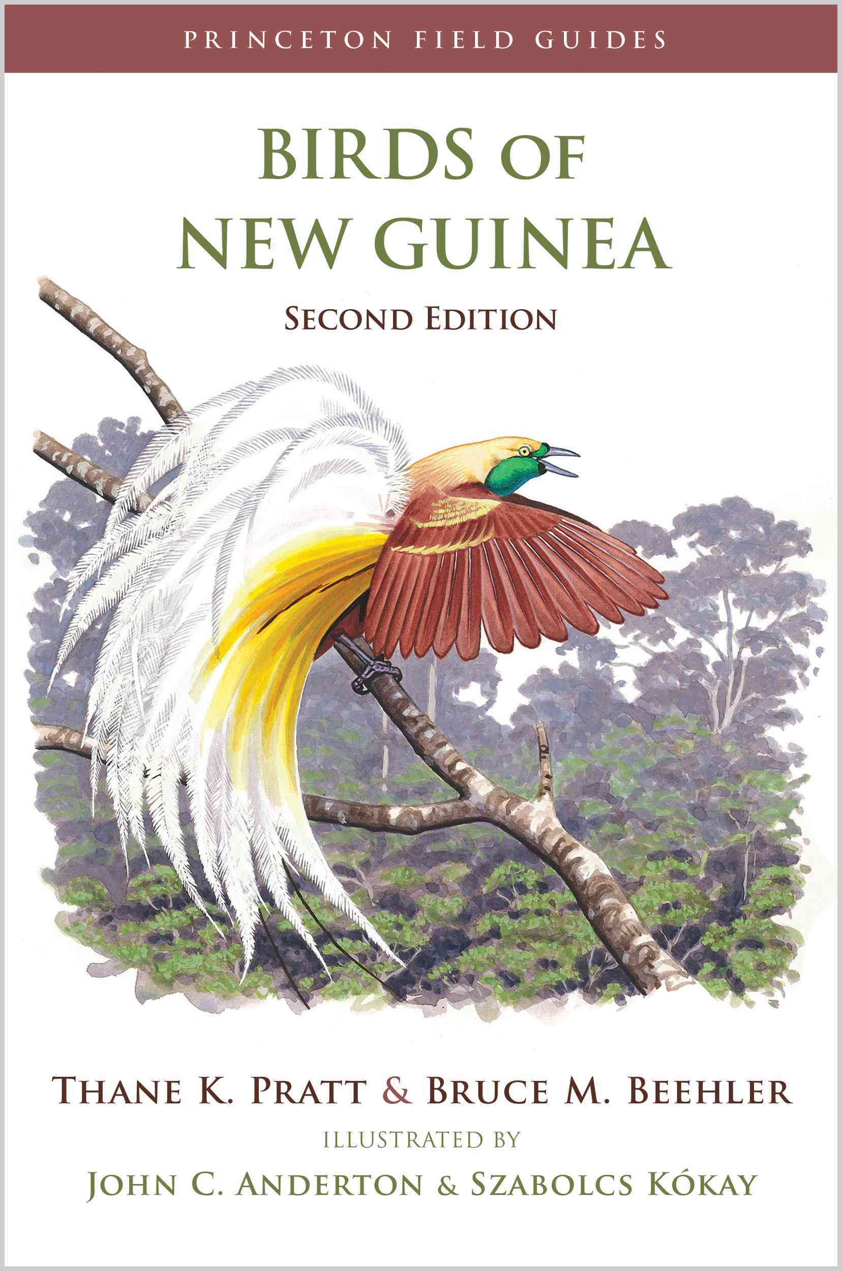 Birds of New Guinea By Beehler, Bruce McP